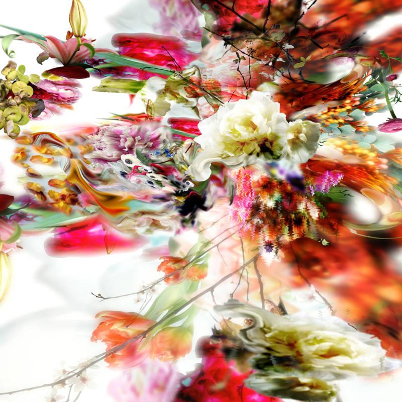 Искаженная Природа. Творчество Изабель Менин.